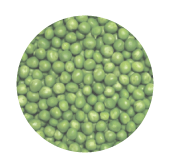 pea protein rain form protein ingredients